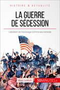 La guerre de Sécession. L'Union déchirée