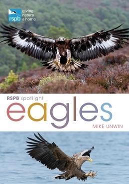 RSPB Spotlight: Eagles