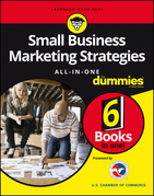 Small Business Marketing Strategies All-In-One For Dummies