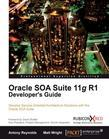 Oracle SOA Suite 11g R1 Developer's Guide