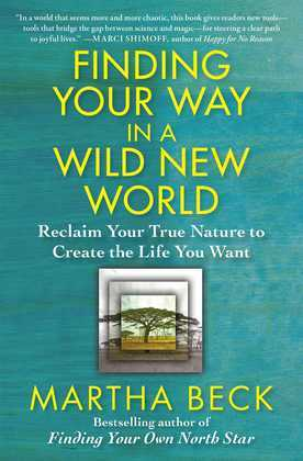 Finding Your Way in a Wild New World: Reclaim Your True Nature to Create the Life You Wa