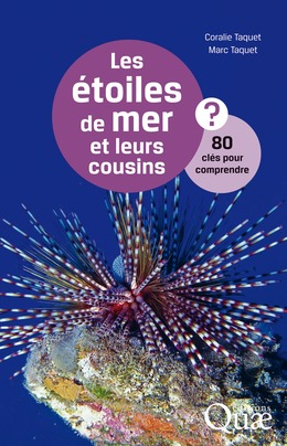 Les étoiles de mer et leurs cousins