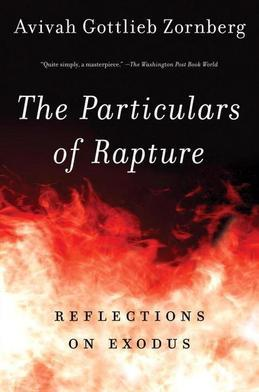 The Particulars of Rapture: Reflections on Exodis