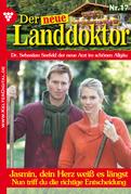 Der neue Landdoktor 17 - Arztroman