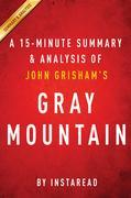 Summary of Gray Mountain: by John Grisham | Includes Analysis