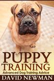 Puppy Training: Advanced Dog Training Advice