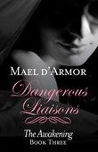 Dangerous Liaisons: Awakening Book 3