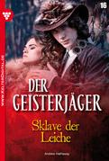 Der Geisterjäger 16 - Gruselroman