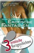 """3 erotische Kurzgeschichten aus: """"Erotische Fantasien"""""""