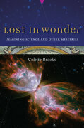Lost in Wonder
