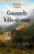 Gesammelte Wildwestromane: Der Medizinmann Omakati + Der kleine Kundschafter + Das Geheimnis des Zuni