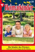 Heimatkinder 22 - Heimatroman