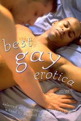 Best Gay Erotica 2002