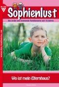 Sophienlust 100 - Liebesroman
