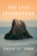 The Last Troubadour