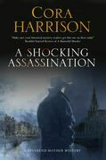 A Shocking Assassination: A Reverend Mother mystery set in 1920s' Ireland