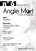 Angle Mort numéro 6