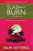 Slash and Burn: A Dr. Siri Mystery Set in Laos