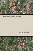 British Animal Tracks