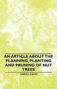 An Article about the Planning, Planting and Pruning of Nut Trees
