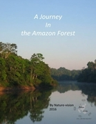 A Journey In the Amazon Forest