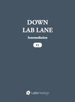 Down Lab Lane: Intermediation