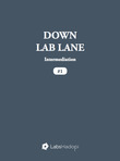 Down Lab Lane: Intermediation