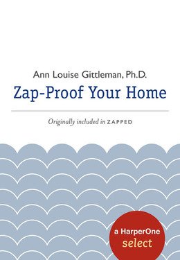 Zap Proof Your Home: A HarperOne Select