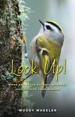 Look Up! : Birds and Other Natural Wonders Just Outside Your Window