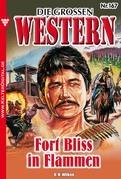 Die großen Western 167