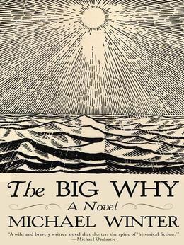 The Big Why: A Novel