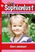 Sophienlust 115 - Liebesroman