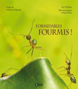 Formidables fourmis !