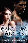 Sanctum Angels Shadow Havens Book 1