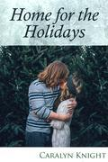 Home for the Holidays: An Erotic Fantasy