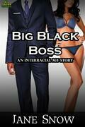 Big Black Boss (Interracial MF Erotica)