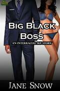 Big Black Boss (Interracial MF Erotica)