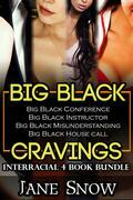 Big Black Cravings (Interracial 4 Book Erotic Bundle)