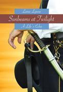 Sunbeams at Twilight
