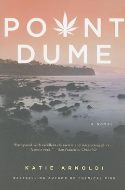 Point Dume: A Novel