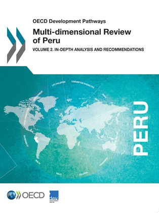 Multi-dimensional Review of Peru