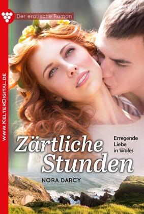 Der erotische Roman 5 – Erotikroman