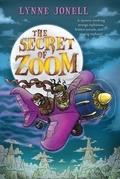 The Secret of Zoom