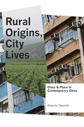 Rural Origins, City Lives: Class and Place in Contemporary China