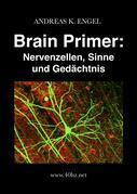 Brain Primer: Arbeitsbuch Neuro- und Sinnesphysiologie