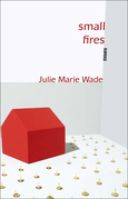 Small Fires: Essays