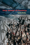 Dear Sound of Footstep: Essays