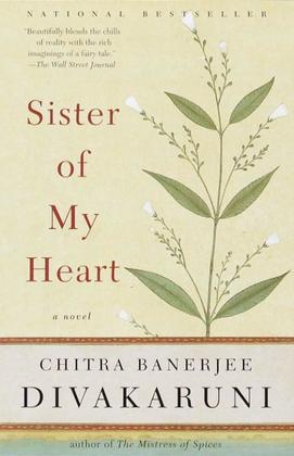 Sister of My Heart: A Novel