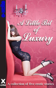 A Little Bit of Luxury: A collection of five erotic stories