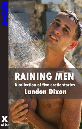 Raining Men: A collection of gay erotic stories